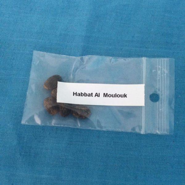Habbat Al Moulouk – 5 Graines