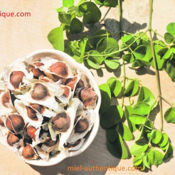 moringa naturel  72 gélules végétal grand taille 00