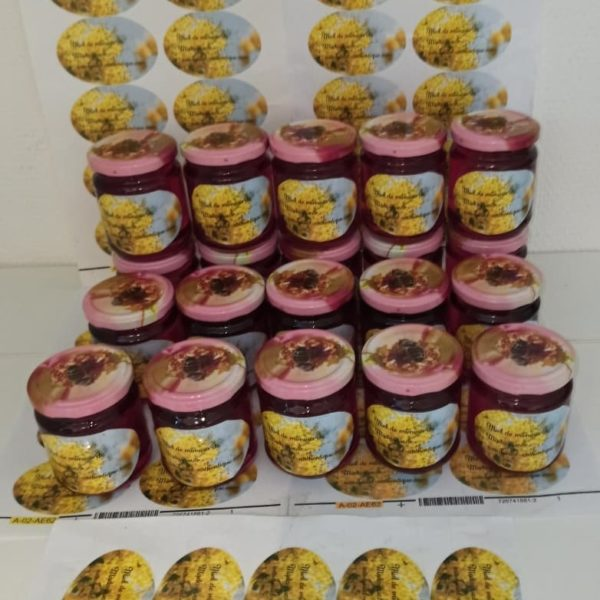 miel sauvage de mimosa de madagascar 250g